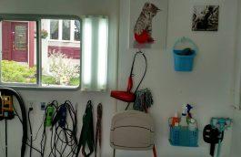 Accessoires de toilettage